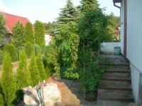 post-2336-1183389350_thumb.jpg